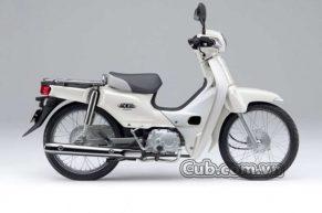 Xe cub 82